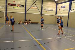 Stratenvolleybal 2014